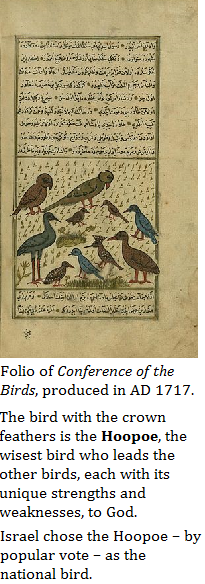 conferenceofbirds3